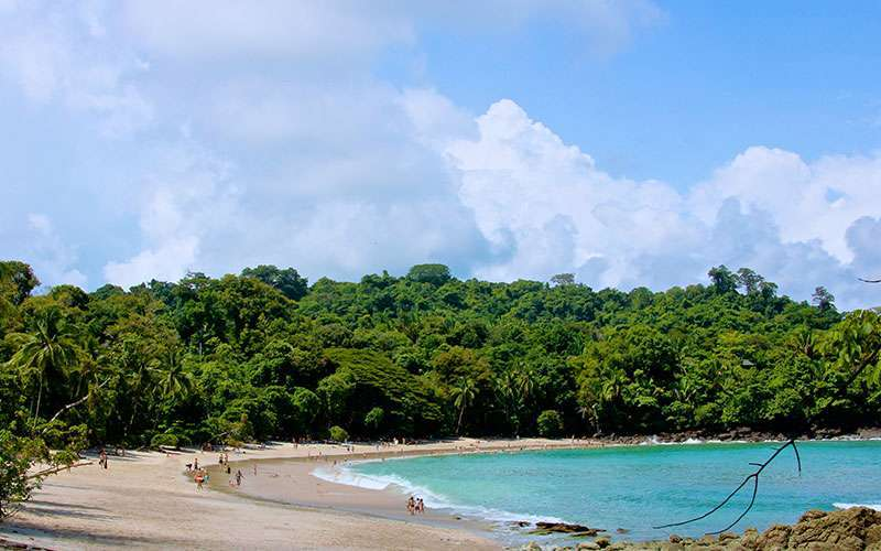 Manuel Antonio is a small town in the Central Pacific of Puntarenas, and it is one of the most beautiful and richest wildlife spots in Costa Rica, having its own National Park called Manuel Antonio.
