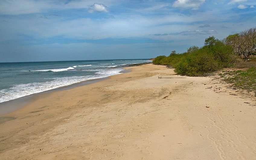 Avellana Beach Costa Rica
