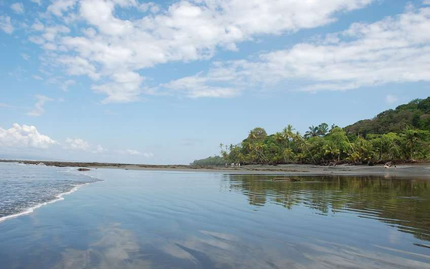 Puerto Jimenez Beaches Costa Rica