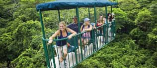 Rain Forest Aerial Tram – Atlantic