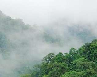 Reserva Biológica De Santa Elena