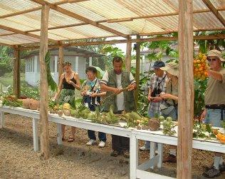 Catie Botanical Gardens