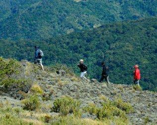 Caminata Al Cerro De La Muerte
