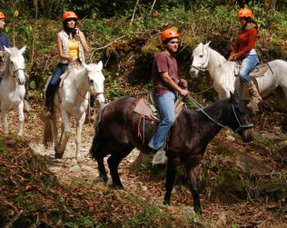 Hike And Horseback Ride To The Waterfalls