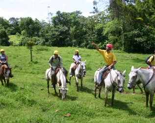 Horseback Riding In Sarapiqui