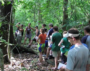 Caminata En La Estación Biológica La Selva