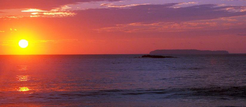 Caño Island Tour