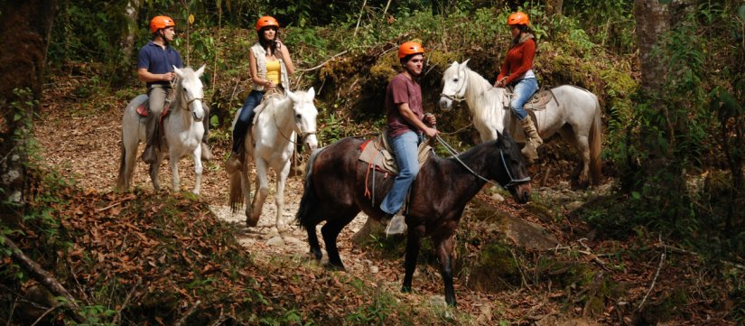 Caminata y paseo a caballo hasta la catarata